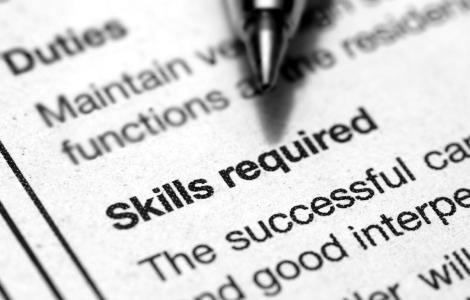 visa skills required